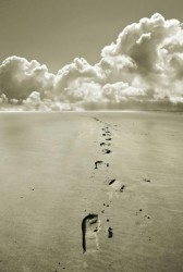 footprints-in-sand-mal-bray
